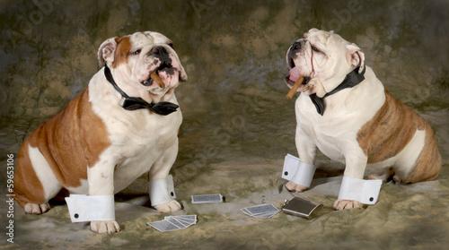 Fotografie, Obraz  poker game