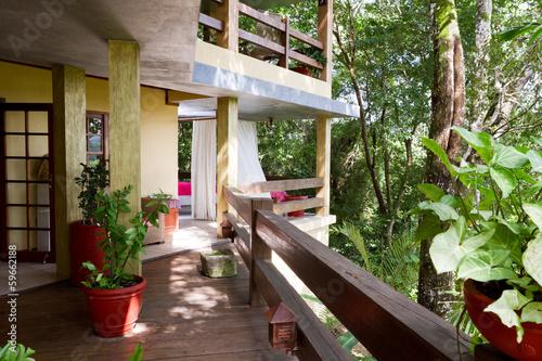 Fototapeta Jungle living in Belize obraz na płótnie