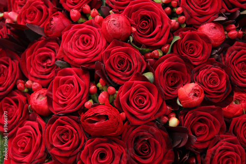 ranunculus, berries and roses in a group #59666971
