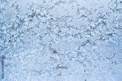 Fotografie, Obraz  Frost pattern