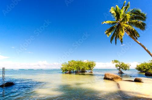 Foto op Plexiglas Caraïben Einsamer karibischer Traumstrand :)