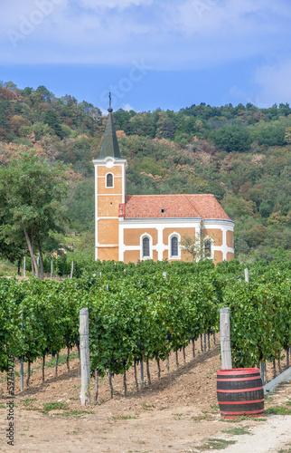 In de dag Oost Europa im Weinanbaugebiet von Badacsony am Balaton in Ungarn