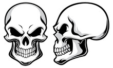 Cartoon Skulls
