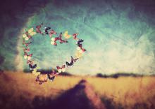 Heart Shape Made Of Butterflie...