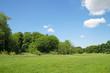 Park im Sommer
