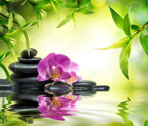 alternative massage in bamboo garden on water - 59946494