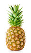 canvas print picture - Ripe pineapple with green leaves