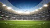 Linia środkowa stadionu - 59980702