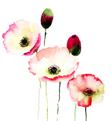 Panel Szklany Maki Stylized Poppy flowers illustration
