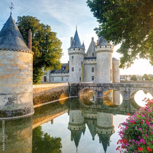 Foto op Plexiglas Kasteel The chateau of Sully-sur-Loire, France