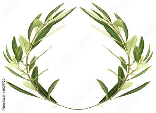 Valokuvatapetti couronne d'olivier sur fond blanc