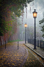 The Mysterious Alleyway In Fog...