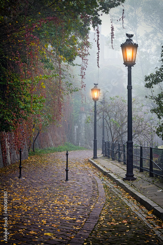 The mysterious alleyway in foggy autumn time with lighted lamps - 60068580