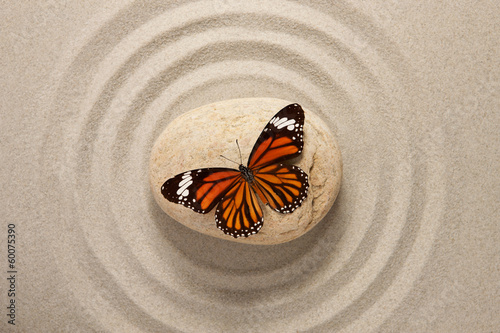 Acrylic Prints Stones in Sand Zen rock with butterfly