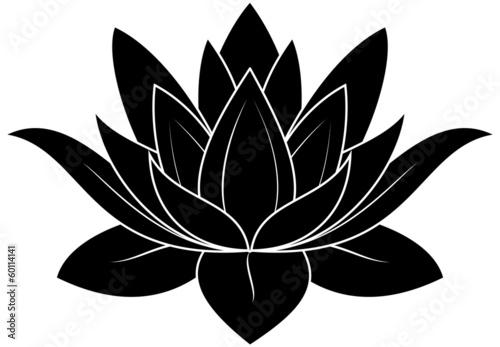 Fotografie, Obraz  Lotus Silhouette