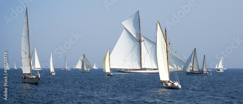 Staande foto Zeilen Regatta in the Gulf of Imperia, Italy