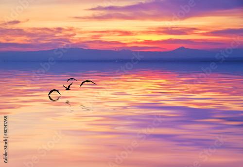 el mar de color purpura