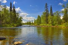 Polisarka River. Kola Peninsula. River Spawning Salmonids