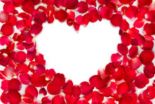 Rose Petals With Place For Text
