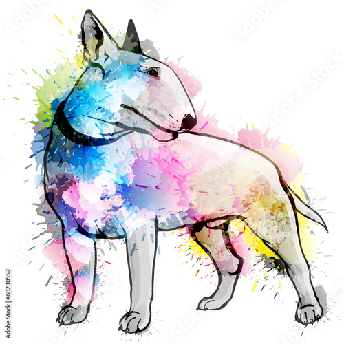 Fotografiet Bull terrier grunge illustration