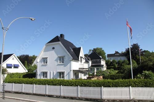 Villas near Oslo Norway Poster