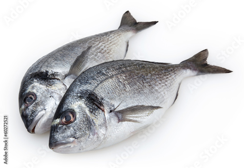 Valokuva  Fish dorado isolated on white background with clipping path