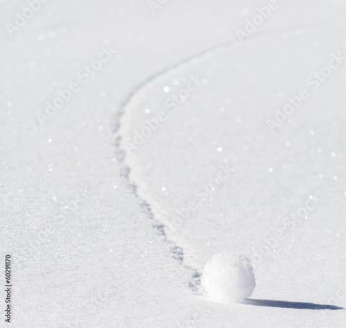 Fotografía  Palla di neve