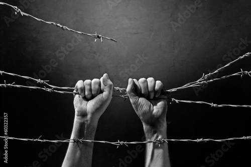 Photo hand behind barbed wire