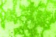 canvas print picture - hellgrüne Hintergrundtextur