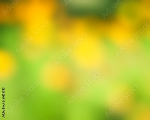 Recess Fitting Narcissus Abstract nature background, selective focus