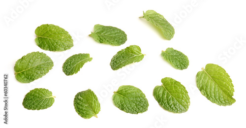 Canvas Prints Condiments Fresh mint close leafs up on white