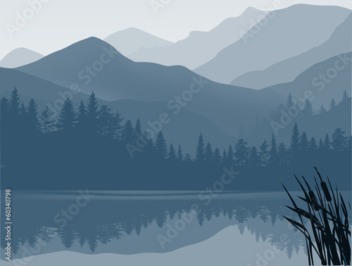 blue and grey lake in mountain forest Poster