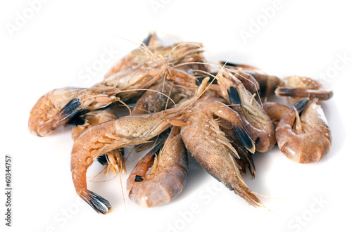 Poster Coquillage gray shrimp