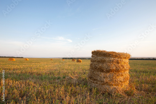 haystacks on field Fototapet