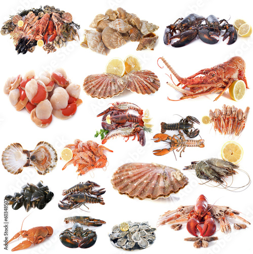 Poster Schaaldieren seafood and shellfish