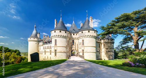 Wall Murals Castle Chateau de Chaumont-sur-Loire, France