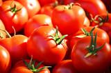 Świeże pomidorki