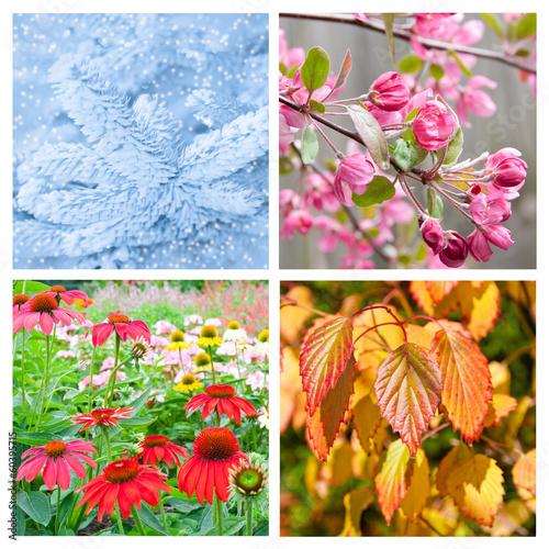 Fotografie, Obraz  Four seasons collage