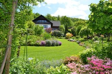Gorgeous Garden With Various F...