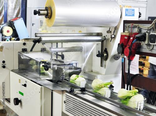 Staande foto Industrial geb. Packaging machine food industry