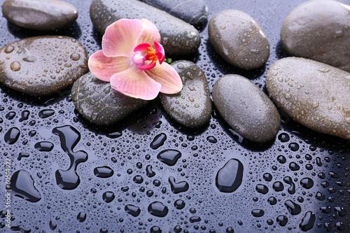 piekna-kwitnaca-orchidea-z-kroplami-wody