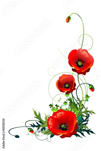 Poppy flowers isolated buy this stock illustration and explore poppy flowers isolated mightylinksfo