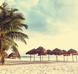 Tropical beach - 60536105