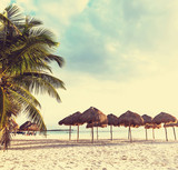 Tropikalna plaża - 60536105