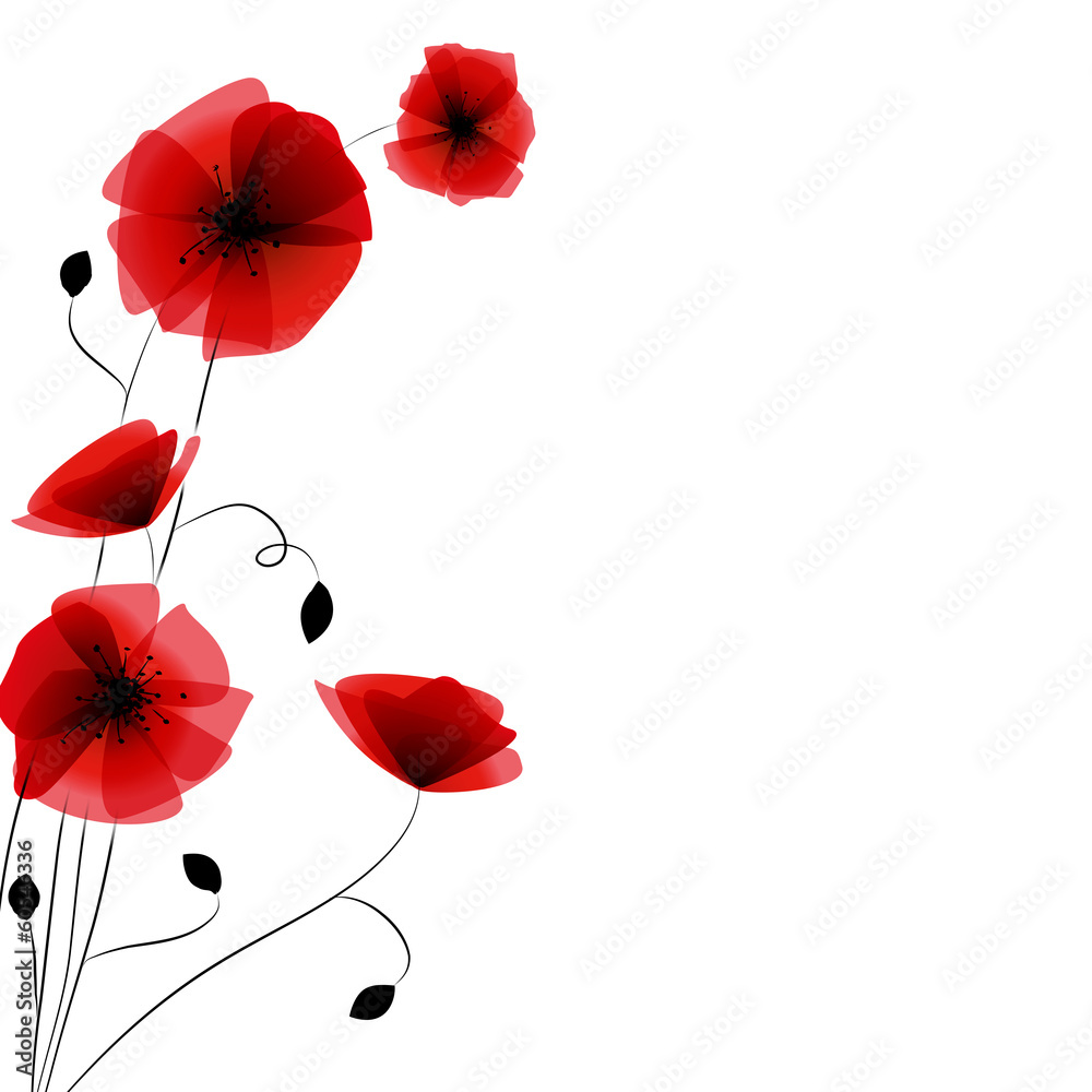 Fototapety, obrazy: Coquelicots