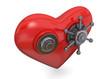 Safe Heart - 3D