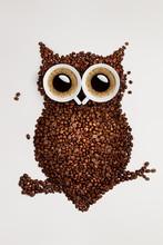 Coffee Owl.