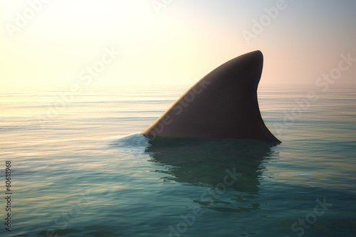 Pinturas sobre lienzo  Shark fin above ocean water