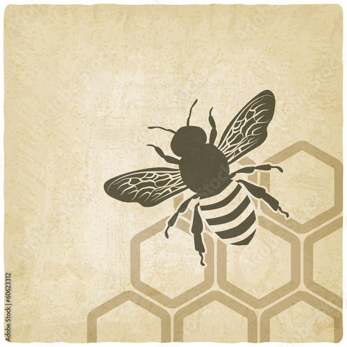 Photo  bee old background - vector illustration