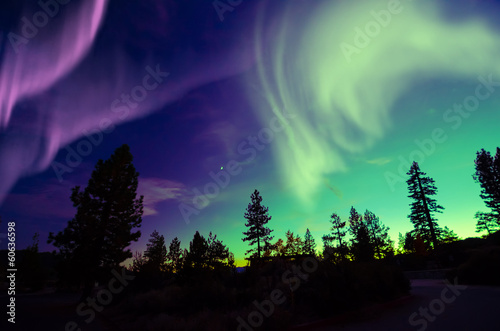 Wall Murals Northern lights northern lights aurora borealis